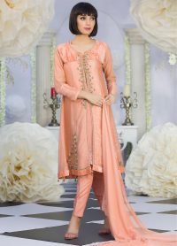 Designer Party Dress Pakistani