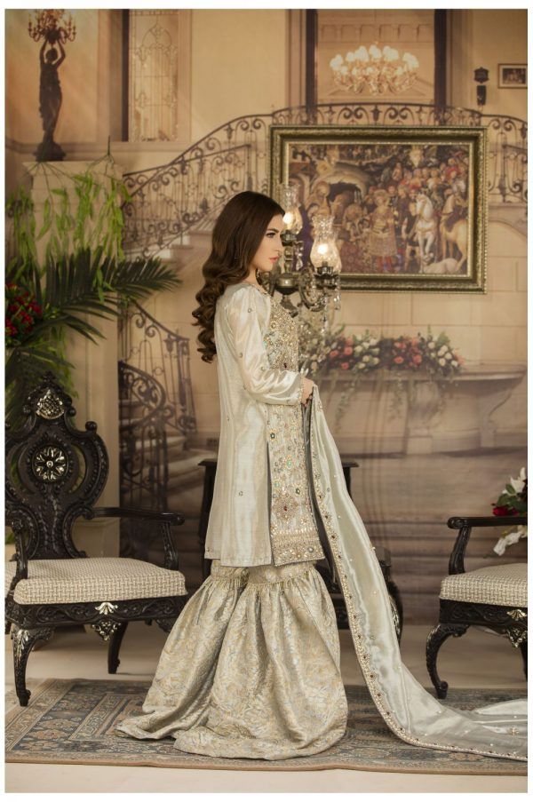 Buy Exclusive Silver And Grey Dress – G14734 Online In USA, Uk & Pakistan - 02