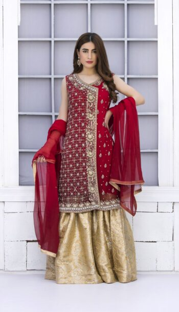 Buy Exclusive Red And Golden Bridal Wear – G15042 Online In USA, Uk & Pakistan - 04