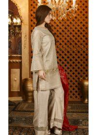 Pakistani pretwear dresses