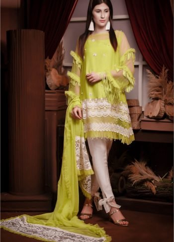 Buy Exclusive Lime Green Party Wear – Aqs13 Online In USA, Uk & Pakistan - 02