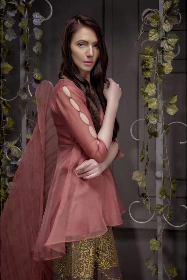 Buy Exclusive Desert Sand Partywear – Aqs93 Online In USA, Uk & Pakistan