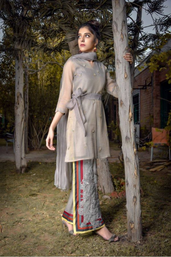Buy Exclusive Grey Party Wear – Aqs94 Online In USA, Uk & Pakistan