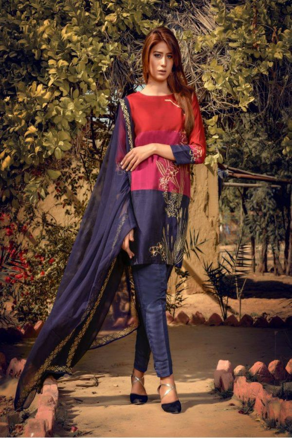 Buy Exclusive Red,Blue And Pink Party Wear – Sds261 Online In USA, Uk & Pakistan - 03