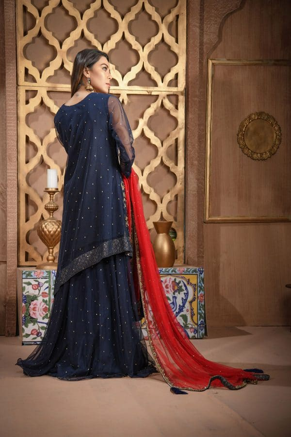 Buy Exclusive Navy Blue And Red Bridal Wear – Sdbd06 Online In USA, Uk & Pakistan - 02
