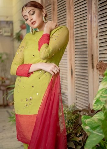 DHANI GREEN & RED PARTY WEAR