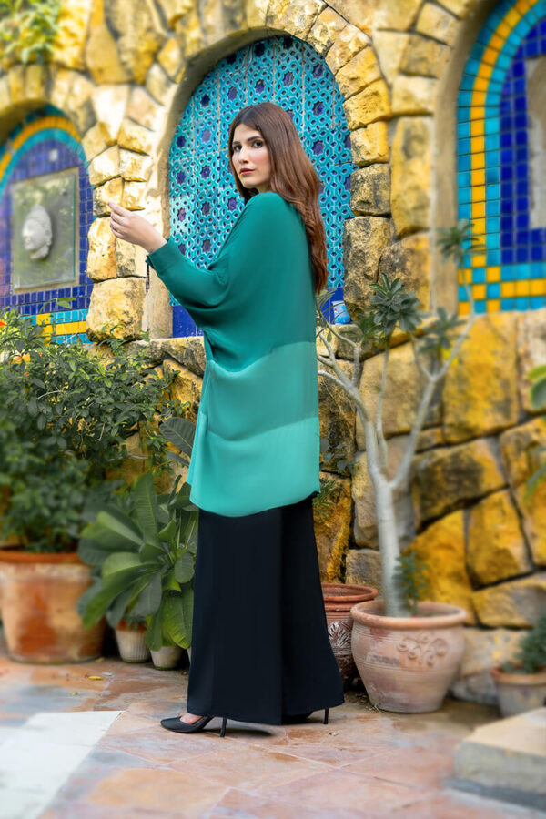Buy Exclusive Green And Black Casual Wear – Sds488 Online in UK, USA & Pakistan - 01