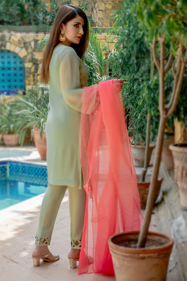 Buy Exclusive Pista Green And Coral Pink Luxury Pret – Sds517 Online in UK, USA & Pakistan - 02