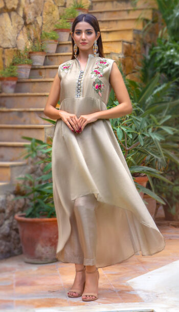 Buy Exclusive Beige Party Wear – Zzs41 Online In USA, Uk & Pakistan - 02